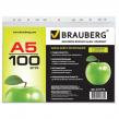 Папки-файлы перфорированные, А5, BRAUBERG , комплект 100 шт., вертикальные, гладкие, «Яблоко»