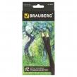 Карандаши цветные BRAUBERG Artist line, 12 цветов, черный корпус, заточенные, премиум качество (180539)