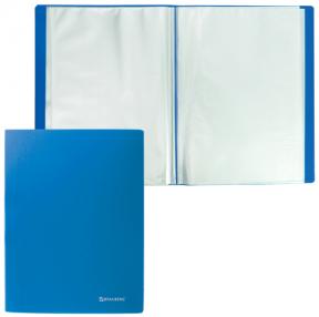 Папка 10 вкладышей BRAUBERG  бюджет, синяя, 0,5 мм