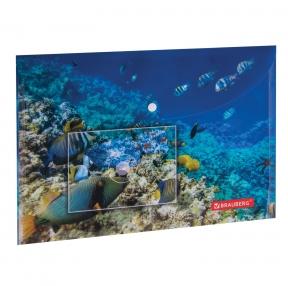 Папка-конверт с кнопкой BRAUBERG SEA WORLD, А4, 160 мкм, до 100 листов, цветная печать (228041)